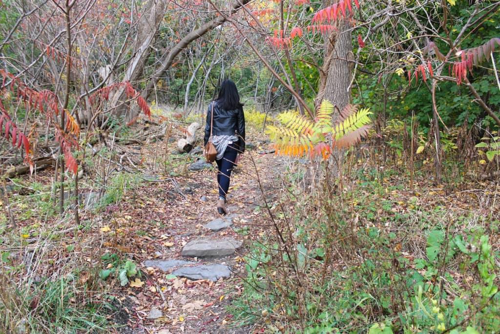 Where to run in Montreal (or walk/hike)