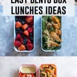 Are you looking for some easy bento box lunches? Why not try one of these fun lunch ideas!
