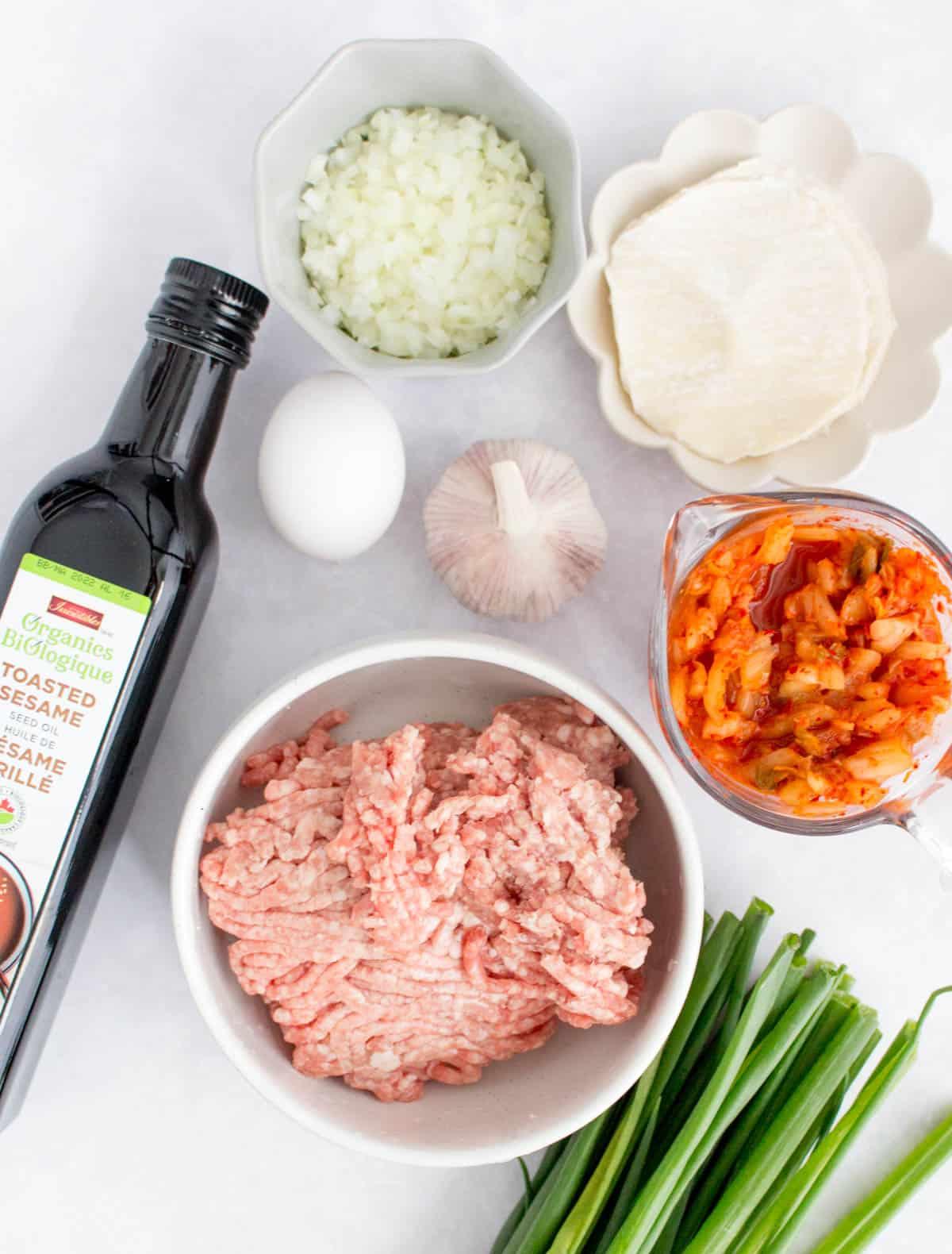 Overhead view of ingredients for kimchi pork dumplings.